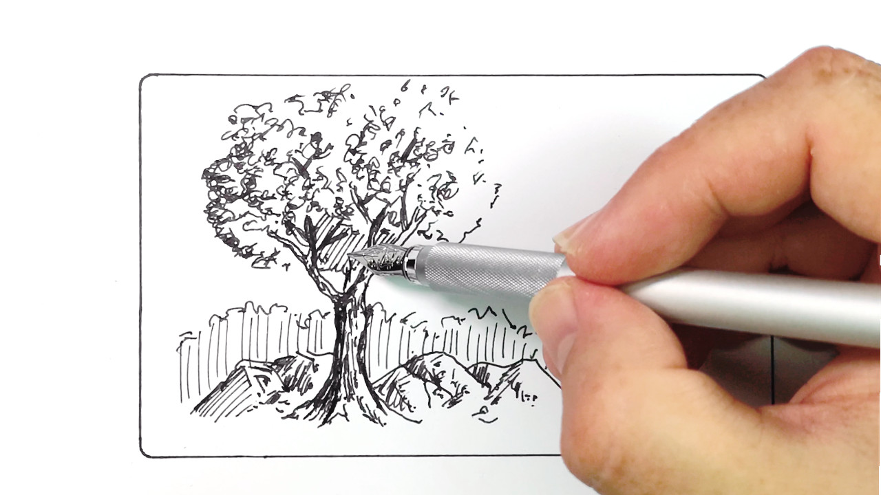 Drawing a tree in pen and ink with the Muji aluminium fountain pen