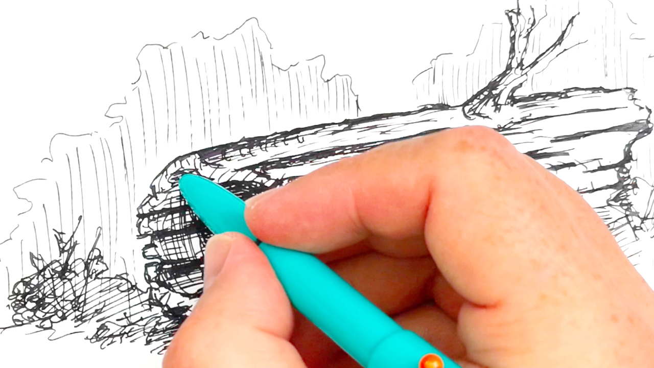 Using the Kaco Retro fountain pen to sketch a hollow log in pen and ink